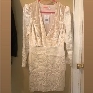 Free people NWT velvet dress - not in stores!